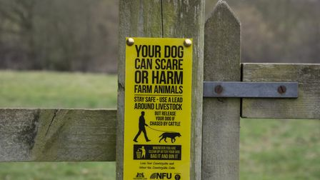 Dog walkers have been warned to keep their pets on a lead near livestock, after an attack on an Esse