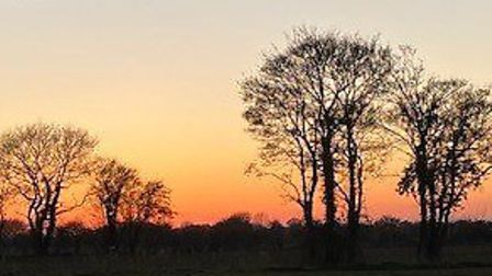 Suffolk Rural schools liaison officer Adele Wyse took this photo on her daily walks. Picture: ADELE