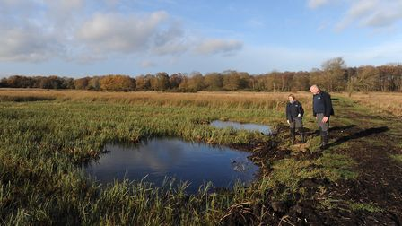 Suffolk Wildlife Trust's reserves like Redgrave and Lopham Fen are closed. File picture: GREGG BROWN