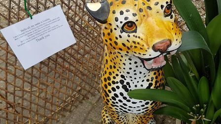 Lousia the leopard is part of Birch's zoo trail - organiser Alice Simpson hopes it will inspire othe
