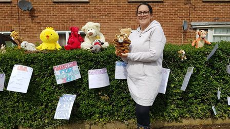 Alice Simpson has filled her front hedge and windows with animals for children to spot on their dail