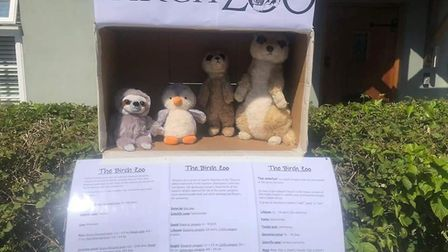 Birch Zoo is spreading across the UK, with some homes across Colchester joining in - and one animal