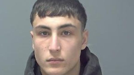 Asghar Hashemi was jailed for 32 months at Ipswich Crown Court Picture: SUFFOLK CONSTABULARY