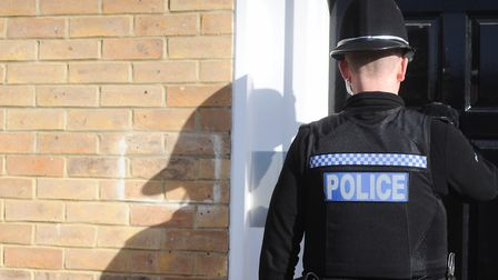 A 16-year-old girl is alleged to have spat on a police officer following a domestic disturbance in C