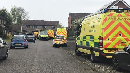 Officers were at the scene of a police incident in Cobbold Road in Woodbridge this evening. Picture:
