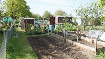 The proposed development would include 17 allotment gardens, but there are concerns over loss of all
