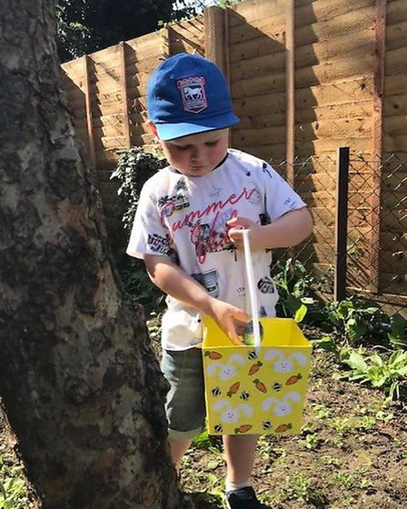 Rocco Chiverton searching for eggs at his home in Norfolk Road, Ipswich. Picture: JEN CHIVERTON