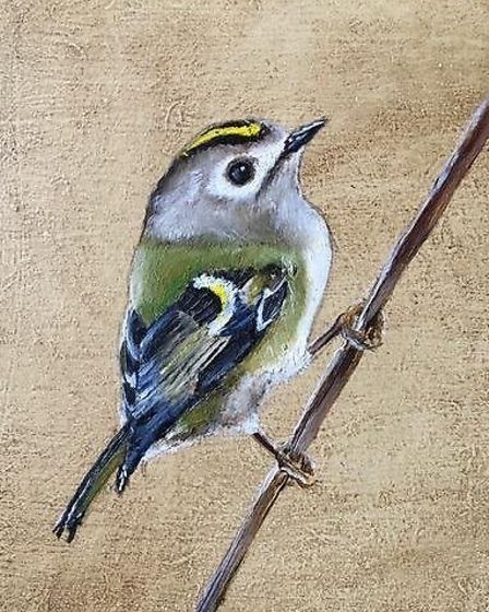 Gold Crest by Becky Munting part of the Alde Valley Spring Festival exhibition which focuses on bird