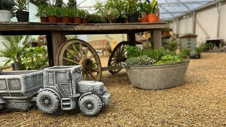 The Potting Shed's potted plants and garden ornaments PICTURE: The Potting Shed