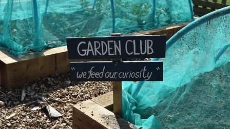 Kelsale Primary School children and staff are still busy looking after their gardens Picture: KELSAL