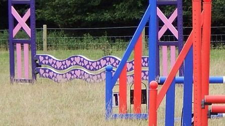Twelve multicoloured horse jumps and an Ifor Williams trailer were stolen from Bures St Mary. PIctu