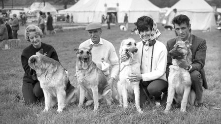 Competitors in the Dog Show at Hadleigh Show in May 1966