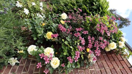 Launched by Sudbury in Bloom, the Pride of Sudbury competition is celebrating the residents handy wo