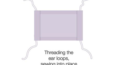 You can then thread the ear loops into place. Picture: GOV.UK