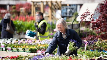Notcutts Garden Centre in Woodbridge reopened its doors to customers on May 13 Picture: SARAH LUCY B
