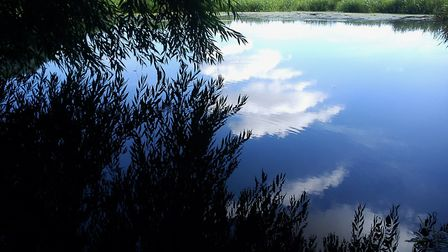 The River Waveney Trust is seeking more trustees Picture: ALISON CONNORS