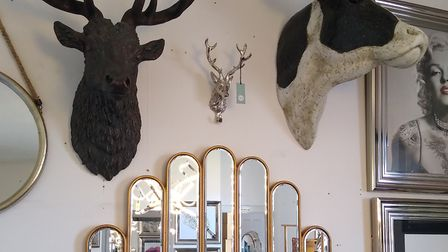 Stag and cow heads for sale, alongside mirrors and wall art Picture: Robert Manning