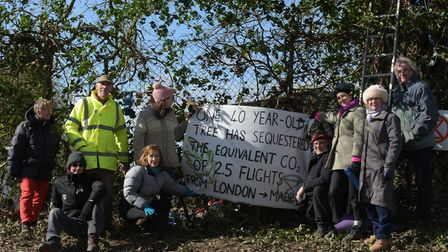 Protestors from Extinction Rebellion began protecting the trees in Thurston in March Picture: SARAH