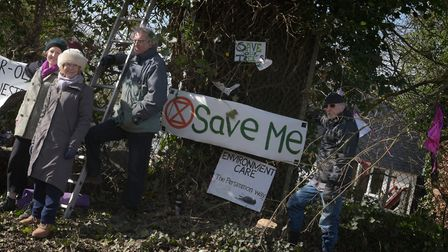 The protestors say the trees do not need to be removed to make way for any development Picture: SARA