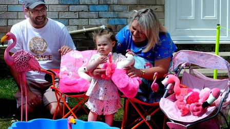 Eighteen-month-old Elsie-May Thomson with dad Darren and Paula Walker and their flamingos in Jarman