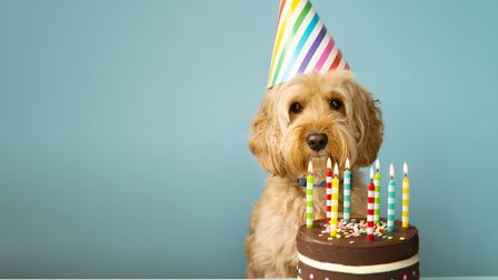 How are you celebrating birthdays in lockdown? Picture: Getty Images/iStockphoto