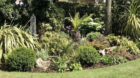 The flowerbed in Mrs Saward's garden was inspired by a trip to New Zealand with her partner for thei