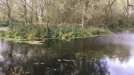 A partnership project costing almost £10,000 has successfully restored the River Stour at Friars Mea