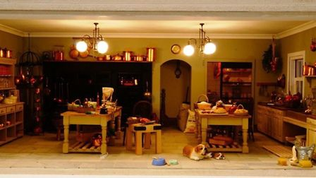 A dolls house kitchen, featuring pet dogs and working lights Picture: Emma Waddell
