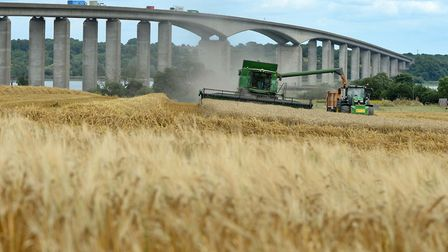 A combine harvester in action in late July 2019, harvesting the field next to Suffolk Food Hall at W