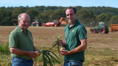 Father and son Roger and Chris Middleditch during the harvest of onions on their fields close to the