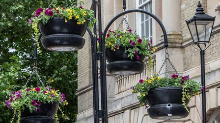 There are hundreds of completed hanging baskets and planters in Bury St Edmunds town centre Picture: