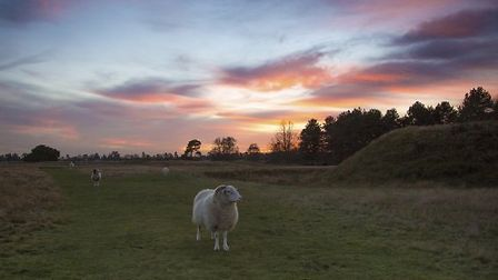 Sunset over the mound at Sutton Hoo. East Anglian beauty spots and historic landmarks are starting t