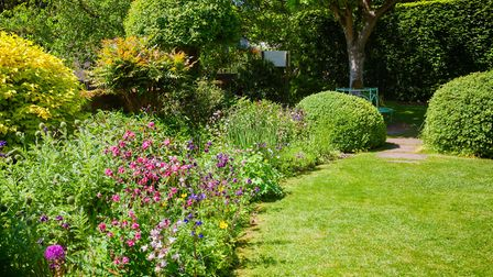 A number of private gardens are due to open in Suffolk this weekend. Picture: Getty Images/iStockpho