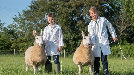 Tom (11) and Harry Lugsden (13) with their Border Leicester sheep would have been taking part in th