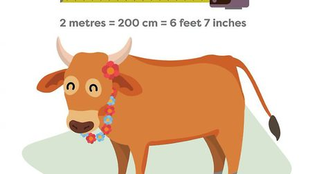 One of the images designed by Thrive for the library to illustrate the concept of two metres to an I