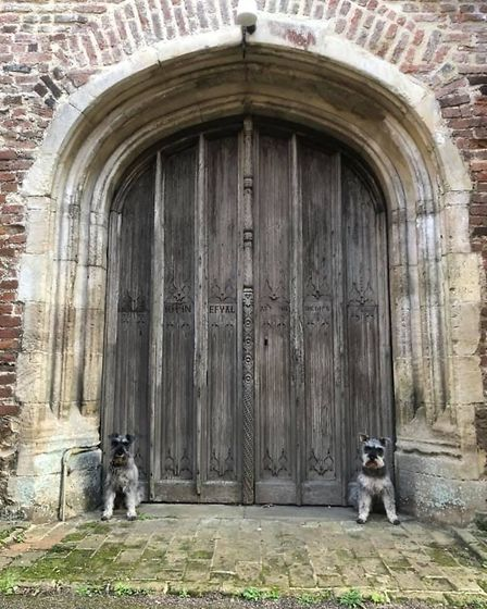 Is anyone home? Mister Noodles and Wilfred Humphrey sat outside the north doors of East Bergholt's h