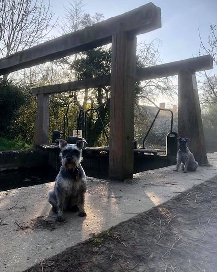 Spotted social distancing at the famous Flatford Mill lock. Picture: GRAHAM REED