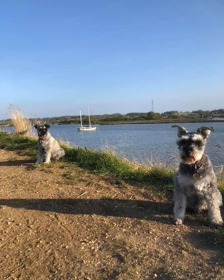 The boys ventured a little further to Manningtree, in north Essex. Picture: GRAHAM REED