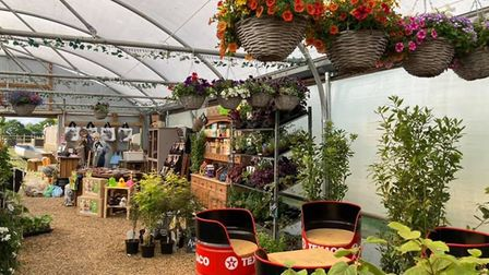 Inside The Potting Shed, showcasing an array of upcycled furniture, plants, flowers and garden decor