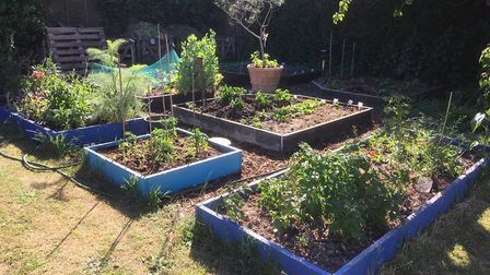 Anna Peachey's garden measuring in at roughly 1200sq metres Picture: ANNA PEACHEY