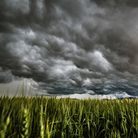A yellow weather warning for storms has been isssued in western areas of Suffolk and north Essex Pi