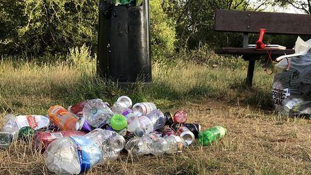 Some of the rubbish left in Ipswich's parks as lockdown restrictions ease Picture: JASON ALEXANDER