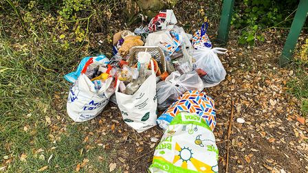 Bags of rubbish left at the entrance of the footpath that leads to the beach in Covehithe Picture: