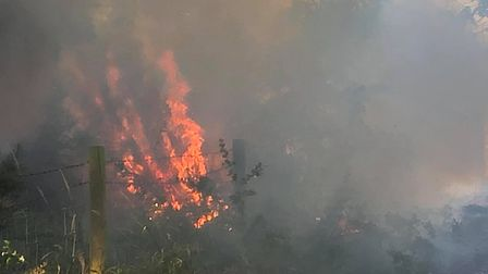 Fire crews are tackling four separate grass fires in Friday Wood Green in Colchester. Picture: RUSSE