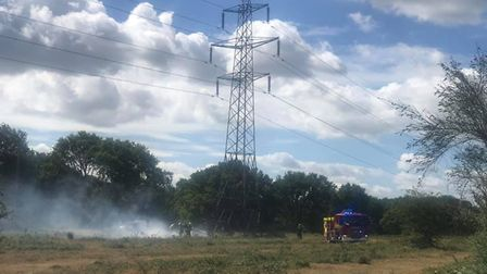 The fires in Friday Wood Green are being treated as deliberate. Picture: NICKY COLLINS