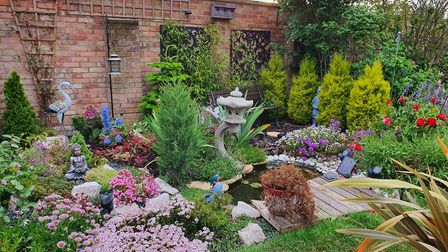 Paul Day's garden. Picture: PAUL DAY