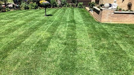 Marie's lawn before Picture: SUBMITTED