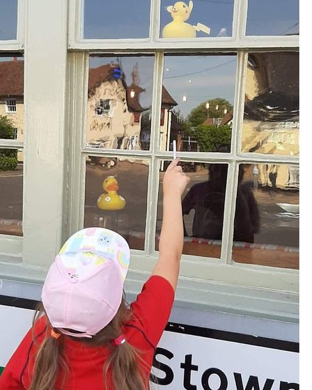 The ducks are hiding in windows of a number of businesses and some private houses Picture: DAWN WIND