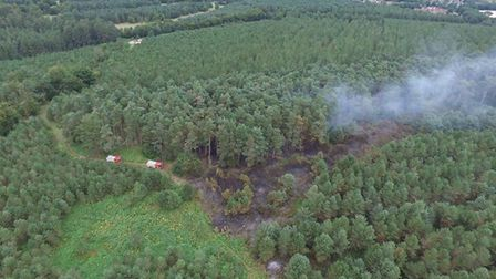 A huge blaze destroyed 14,000sq m of Thetford Forest. Picture: NORFOLK FIRE AND RESCUE SERVICE