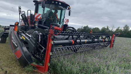 Fairking swathing lucerne under contract for Dengie Crops Picture: ANDREW FAIRS